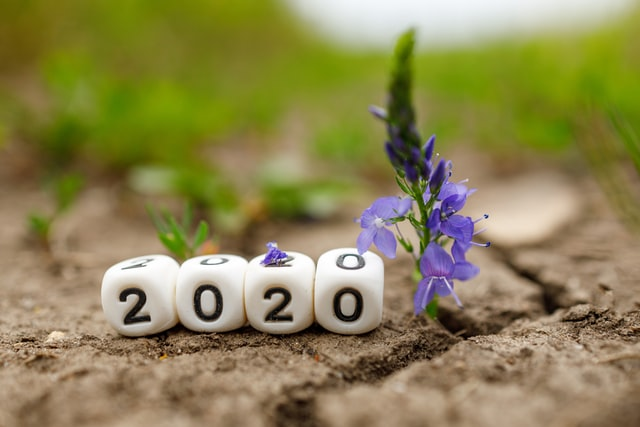 2020 Year in Review for jayanthyg.in